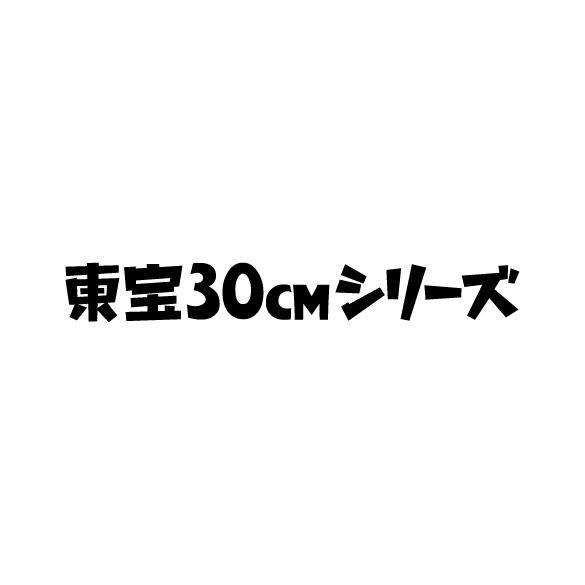 Toho 30cm